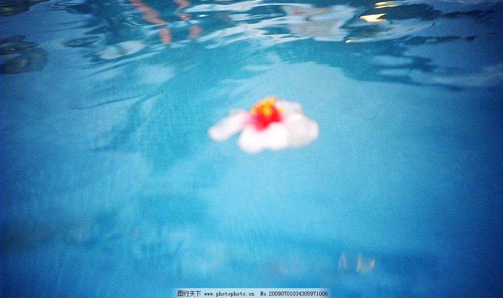 夏日情怀 旅游 景观 景象 湖泊 池塘 水色 水波 浮叶 光线 倒影 旅游