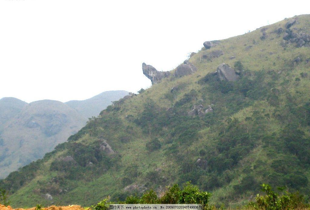 自然风景 山景 石头 绿树 绿草 野草 泥土 自然景观 摄影图库 300dpi
