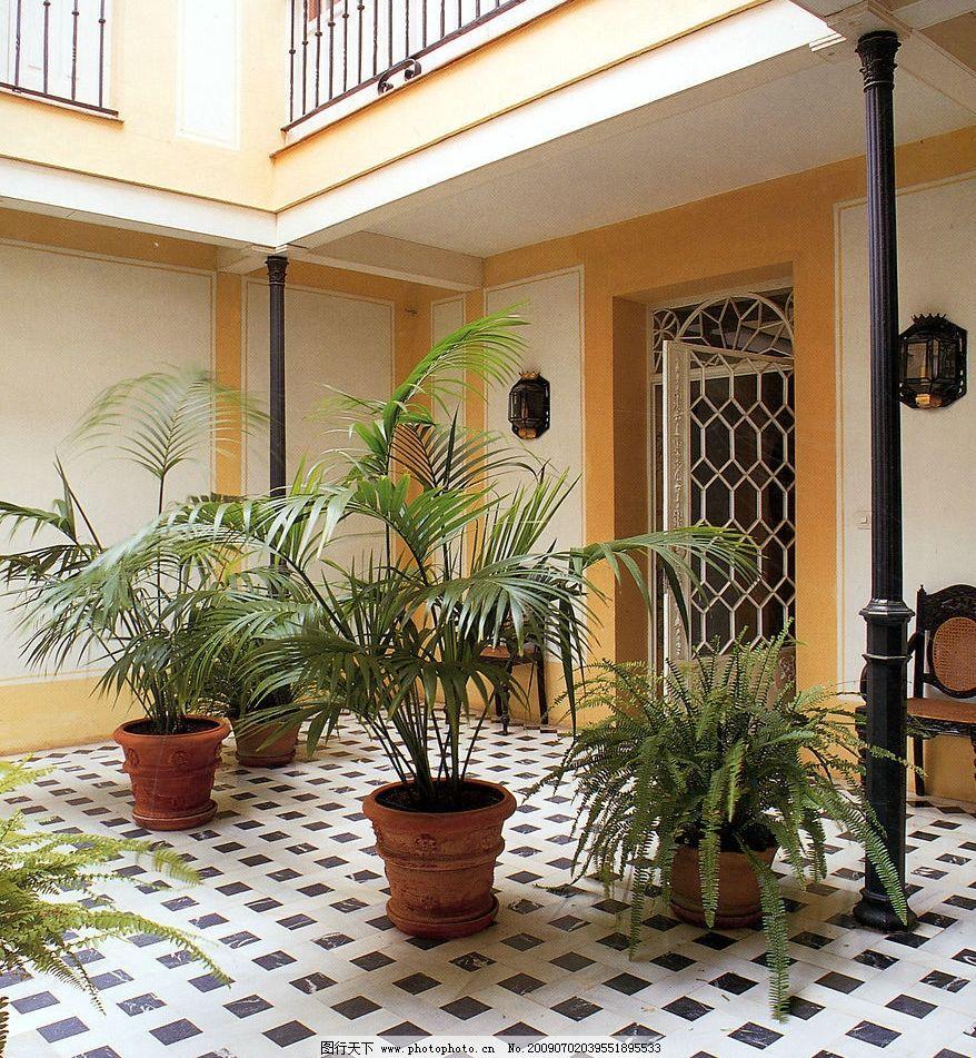 别墅空间 庭院 园林 花园 住宅 奢华 华丽 中庭 天井 欧式图片
