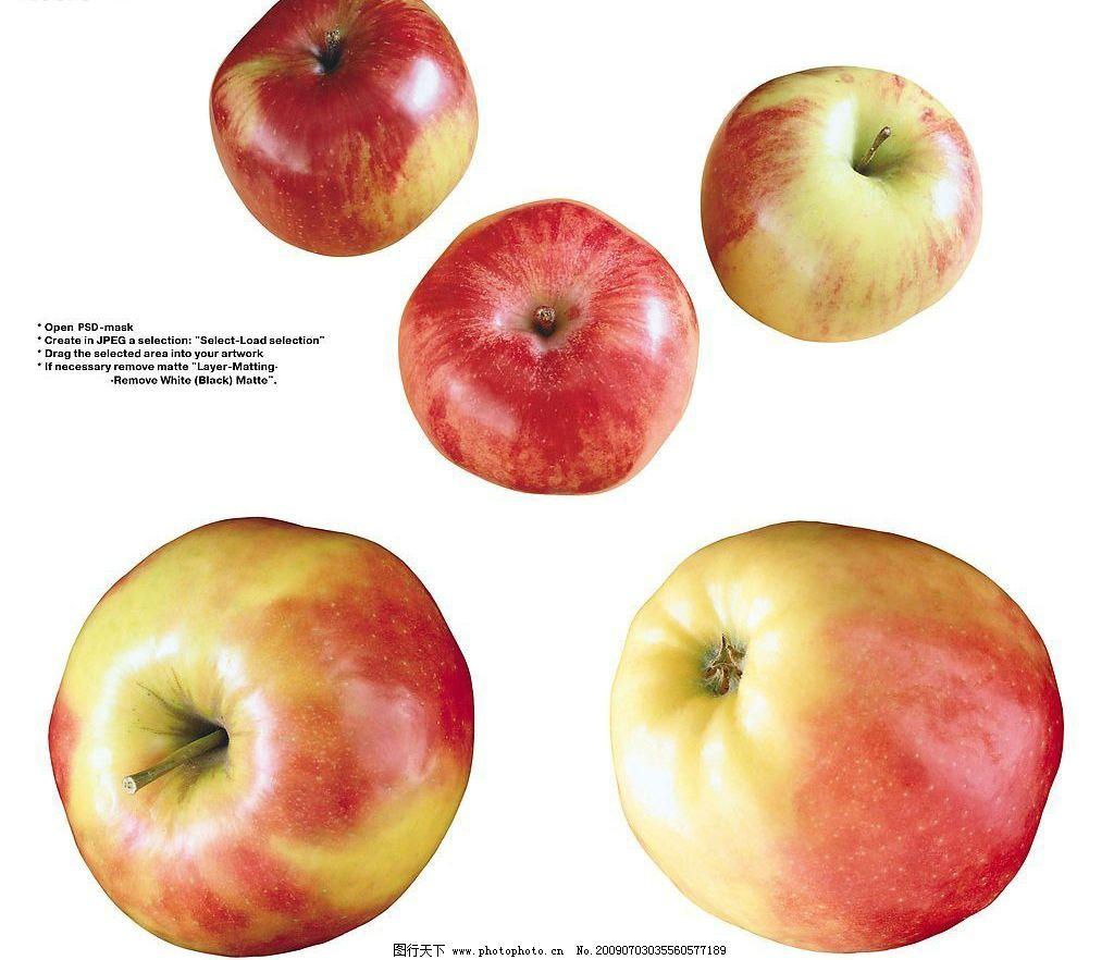苹果 红苹果 青苹果 水果 果实 生物世界 摄影图库 72dpi jpg