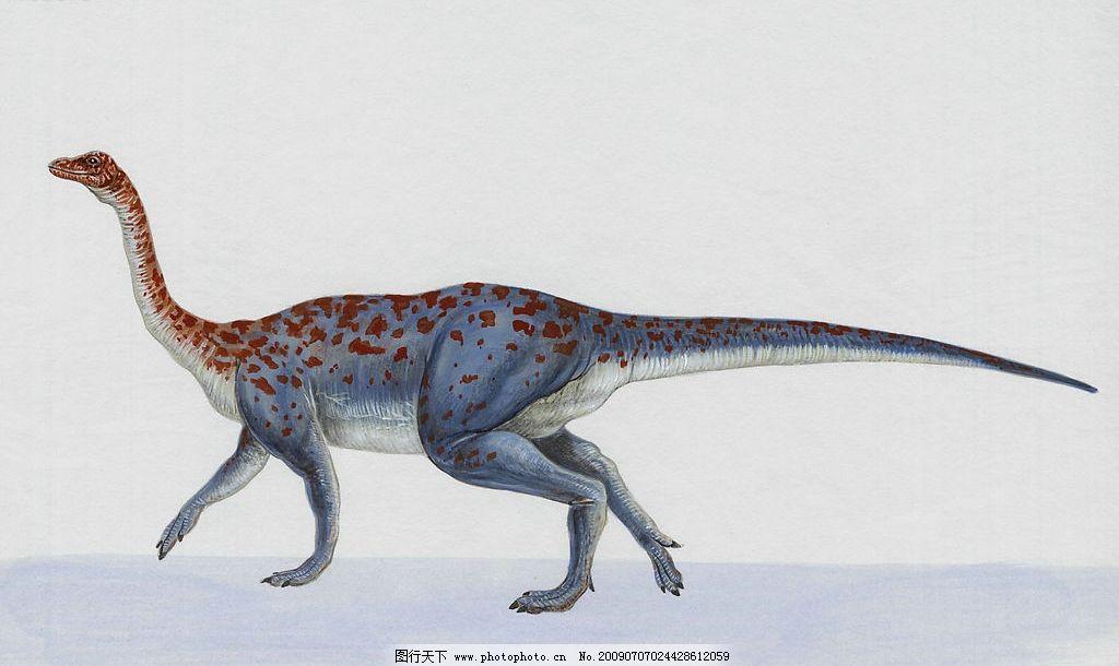 恐龙1图片_野生动物_生物世界_图行天下图库