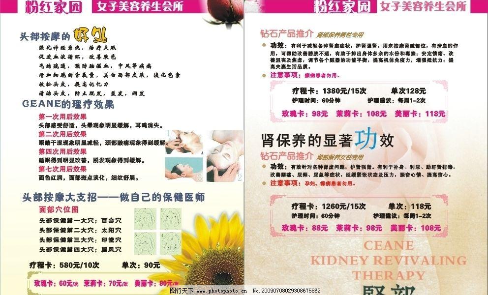 美容院 头疗的好处 肾保养 广告设计 画册设计 矢量图库