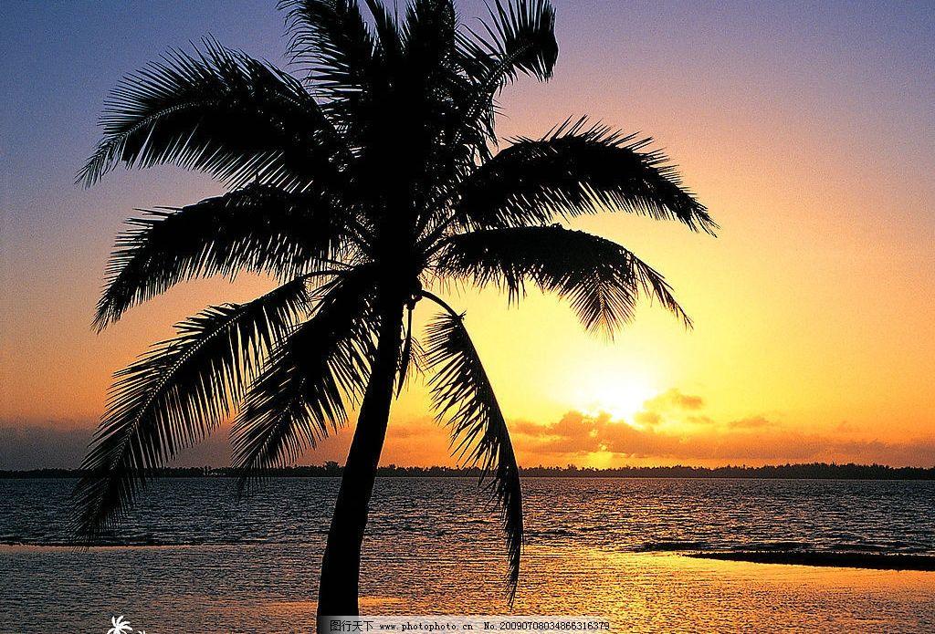 夕阳 晚霞 沙滩 海边 椰子树 自然景观 自然风景 摄影图库 72dpi jpg