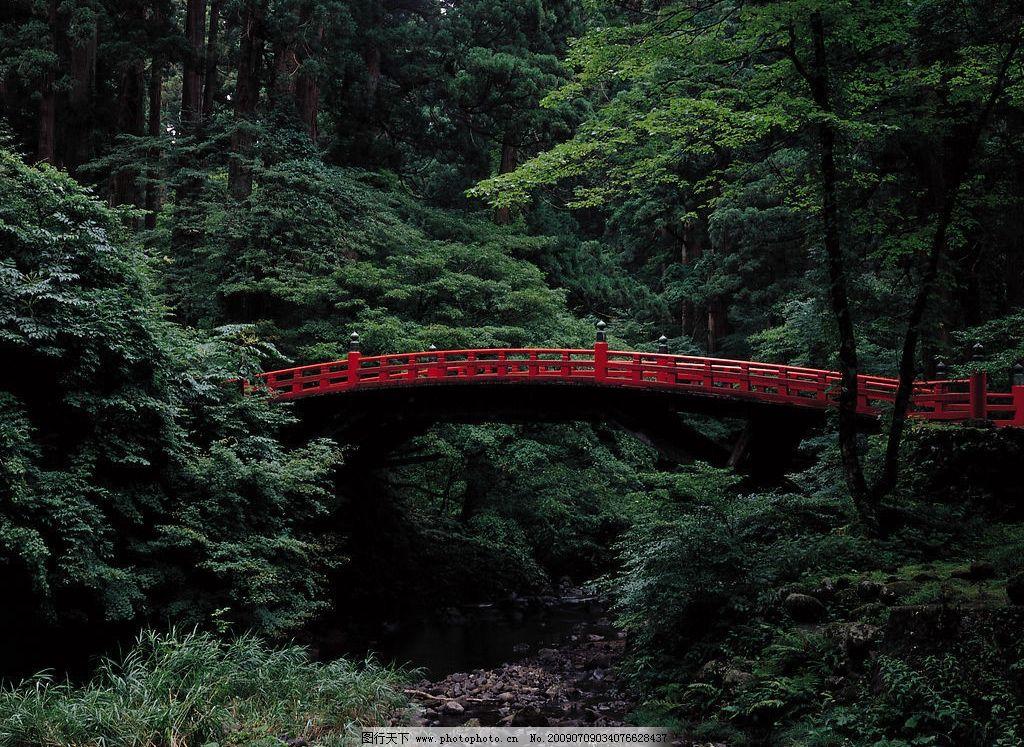 日本风景 独木桥 红色的小桥 山林 树林里的桥 旅游摄影 国外旅游
