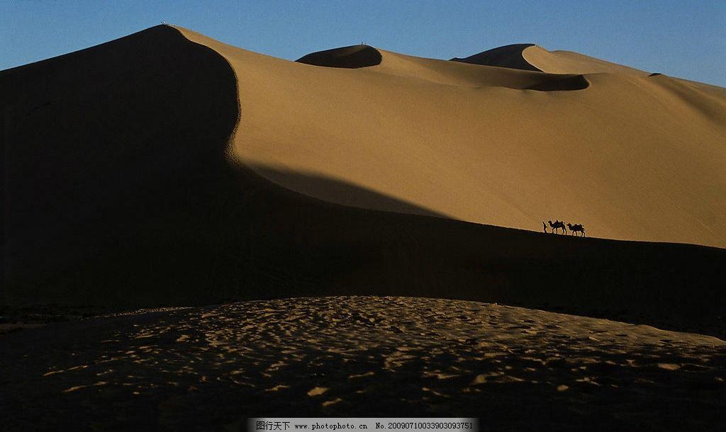 沙丘 沙子 沙漠 骆驼 行人天空 旅游摄影 国内旅游 摄影图库 风景如画