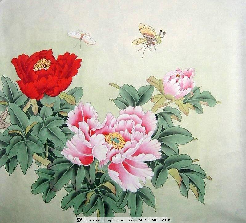 牡丹花 画 牡丹 花 文化艺术 绘画书法 设计图库 72dpi bmp