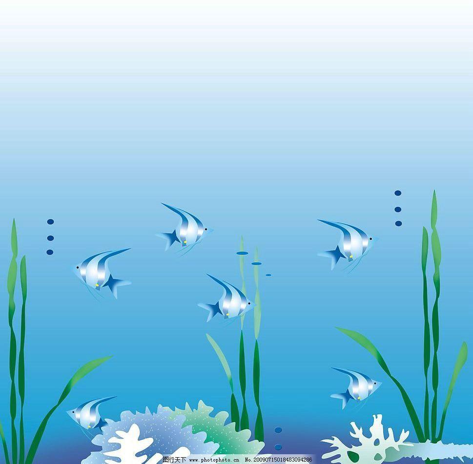 海底生物图片