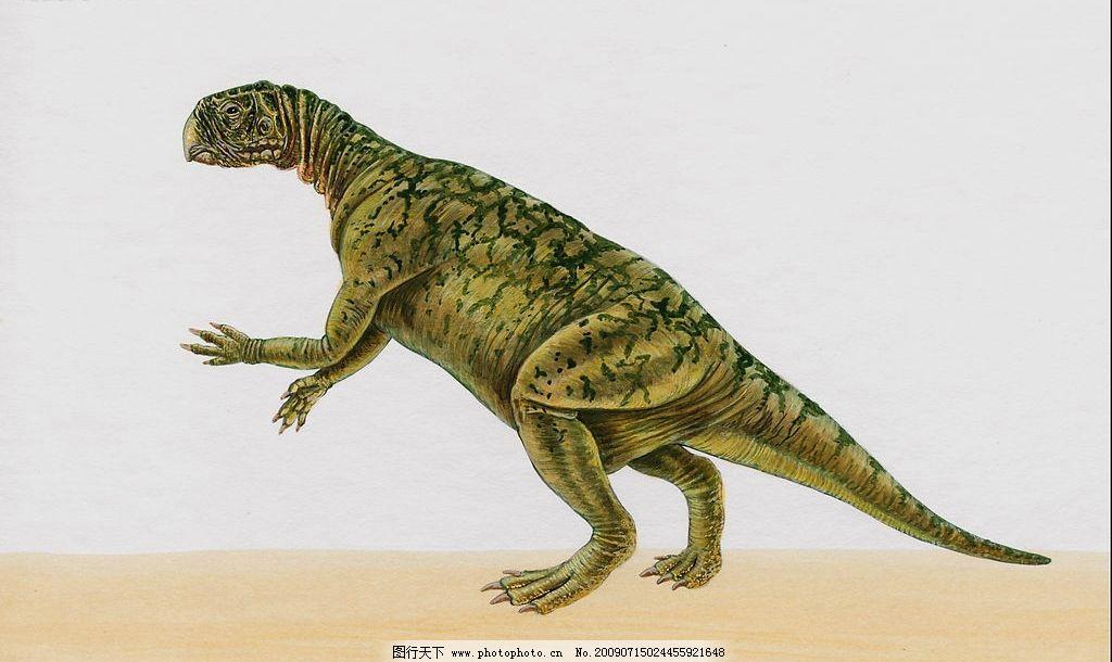 恐龙9 史前动物 凶猛动物 史前巨兽 恐龙大图