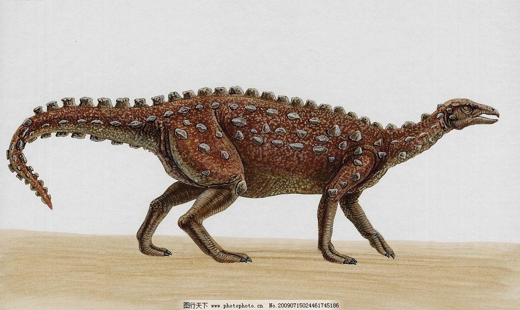 恐龙4 史前动物 凶猛动物 恐龙大图
