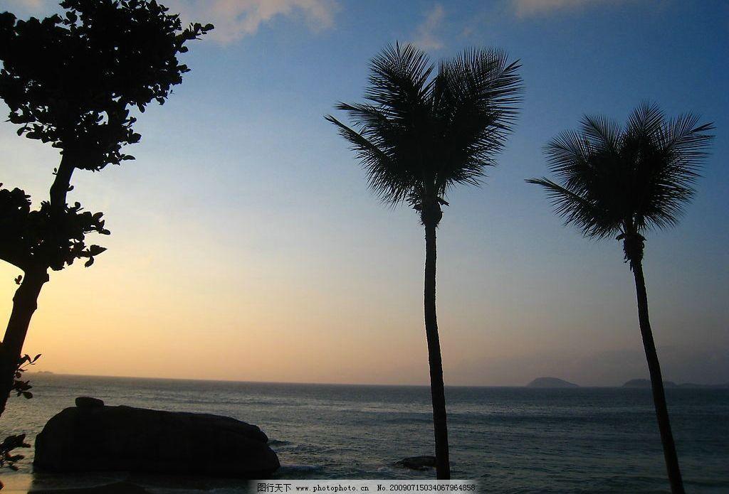 背景 壁纸 风景 树 天空 桌面 棕榈树 1024_695