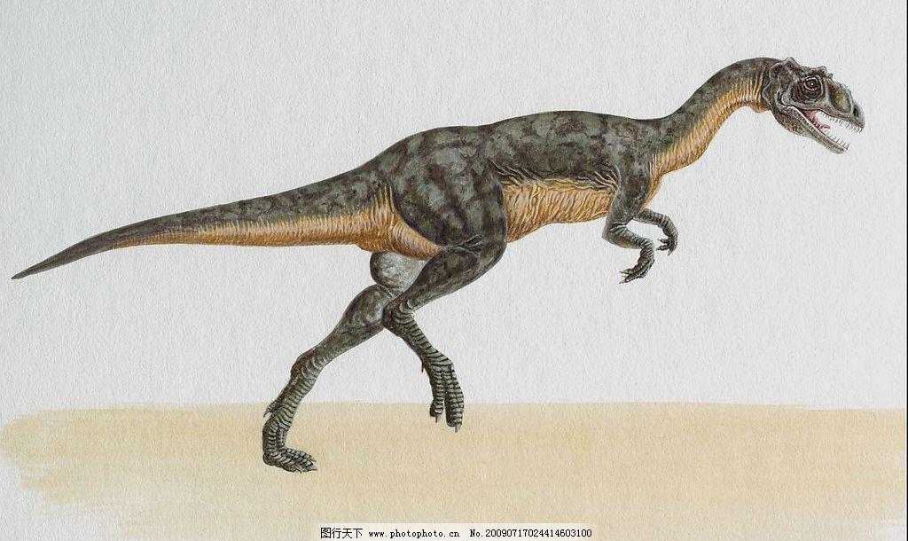 恐龙17 恐龙大图 史前巨兽 巨型动物 史前动物