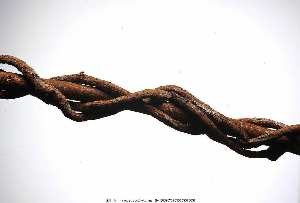 古木 奇特的木头 背景 艺术背景 数木 木纹 造型 古木摄影 生物世界