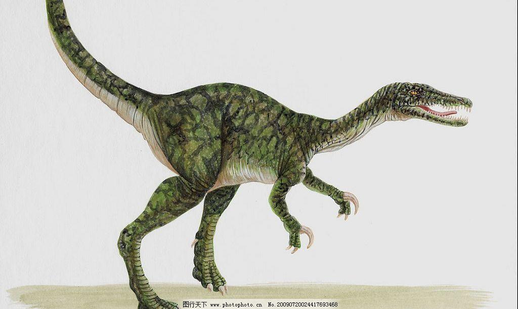 恐龙21图片_野生动物_生物世界_图行天下图库