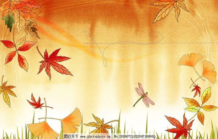 水彩画 风景 蜻蜓 枫叶 秋天 psd分层素材 源文件库 300dpi psd