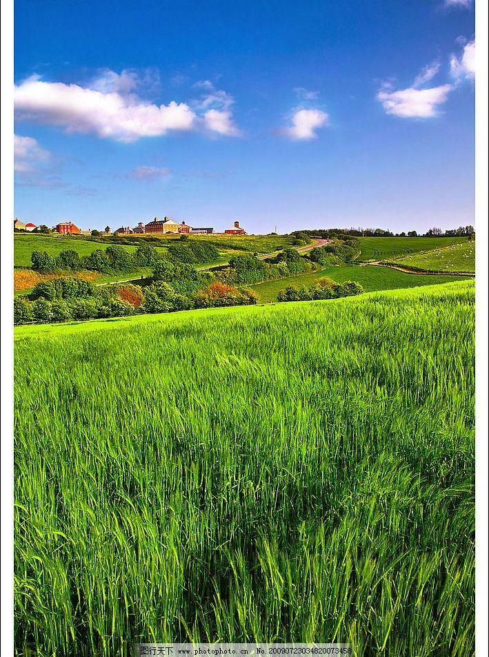 设计图库 自然景观 自然风景  美丽田园 美丽风景 蓝天 白云 云层