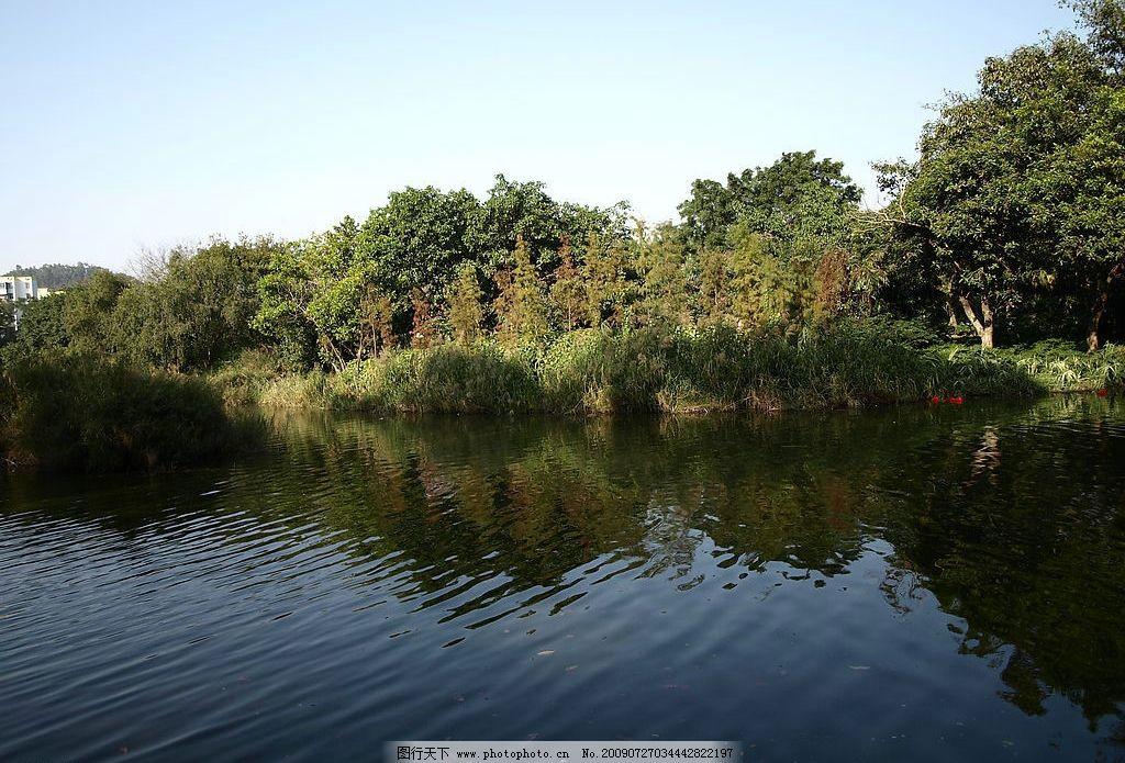 青山绿水 湖面 蓝天白云 树林 水 树 蓝天 波纹 自然景观 山水风景