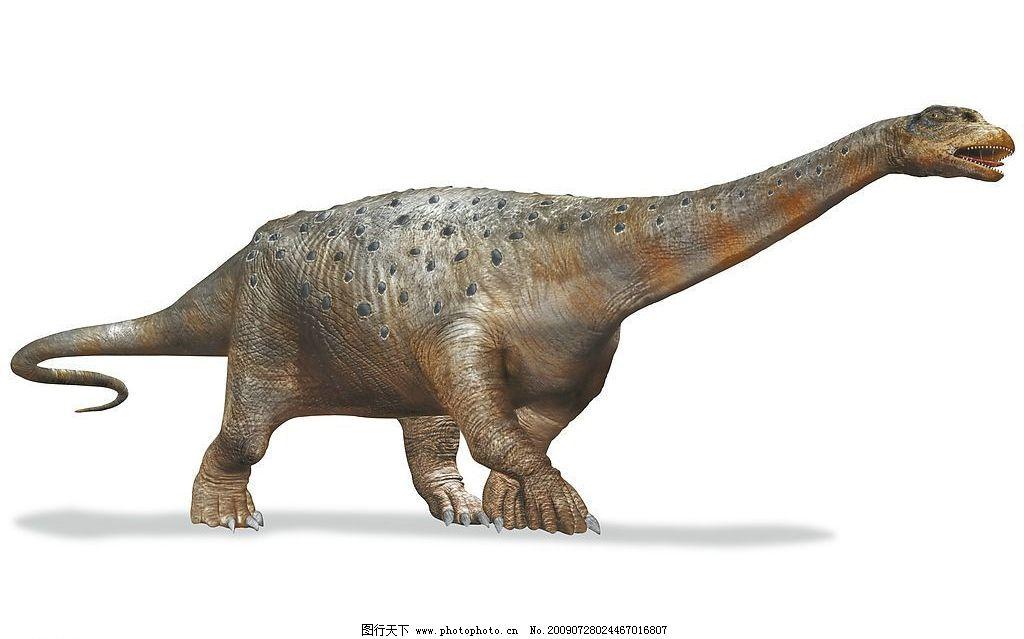 恐龙 生物 神话恐龙 生物世界 野生动物 设计图库 jpg