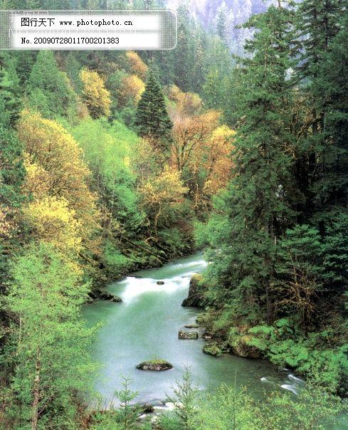 树 植物 水 风景 山 树免费下载 山水风景 摄影图 自然景观