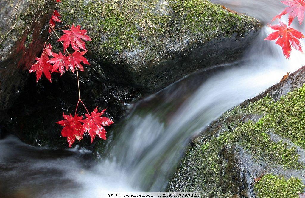 枫叶瀑布 自然 瀑布 枫叶 小河 自然景观 山水风景 摄影图库 72dpi