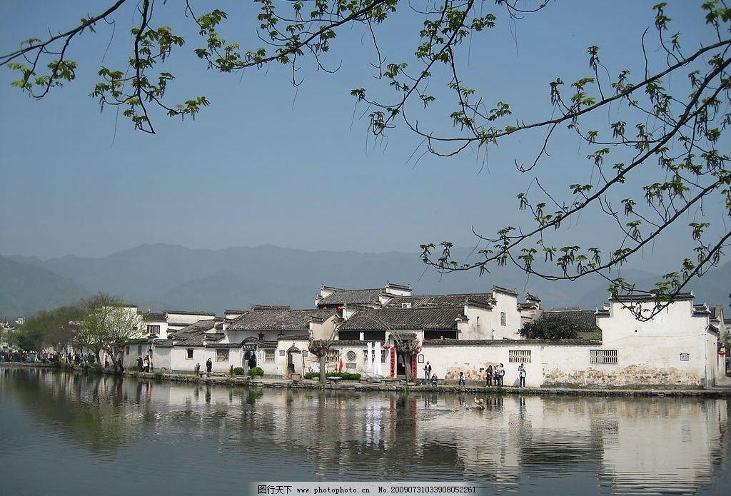 摄影 宏村 湖水 树枝 徽派建筑 安微 国内旅游 摄影图库 风景