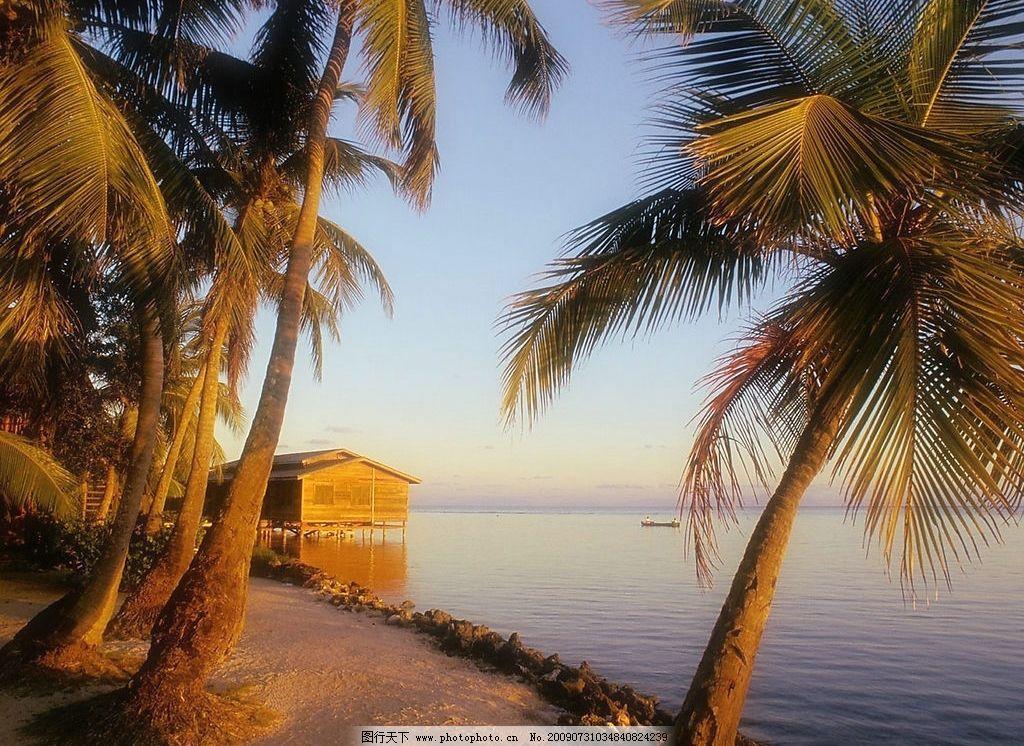 海边风景 美丽风景 海边 沙滩 海水 蓝天 白云 云层 树木 景色 椰树