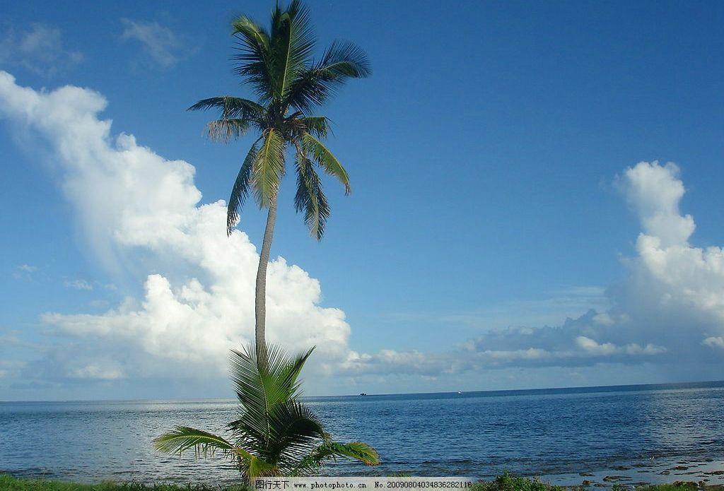 蓝天白云大海椰子树图片