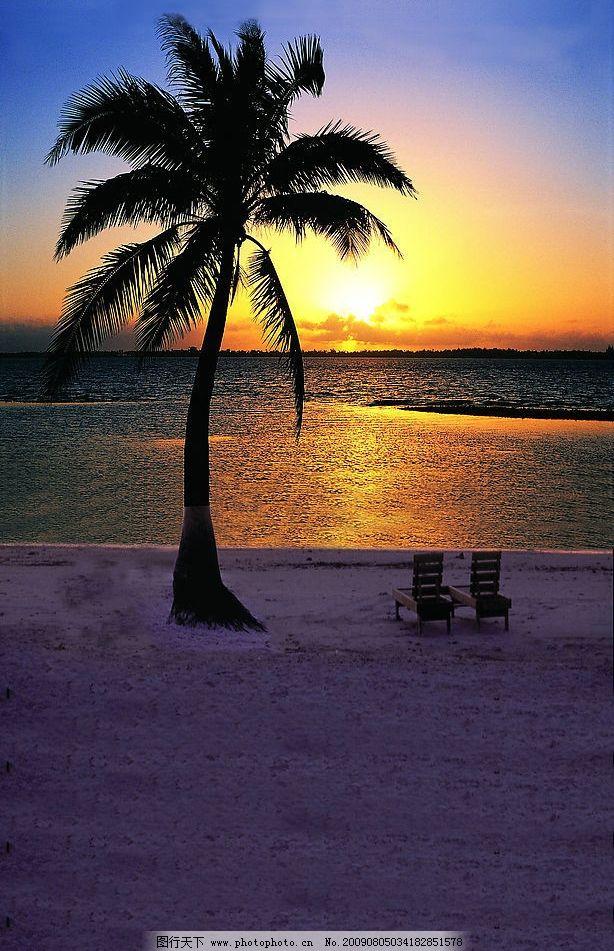 海边夕阳 海 椰子树 夕阳 沙滩 落日 蓝天 旅游摄影 自然风景 摄影