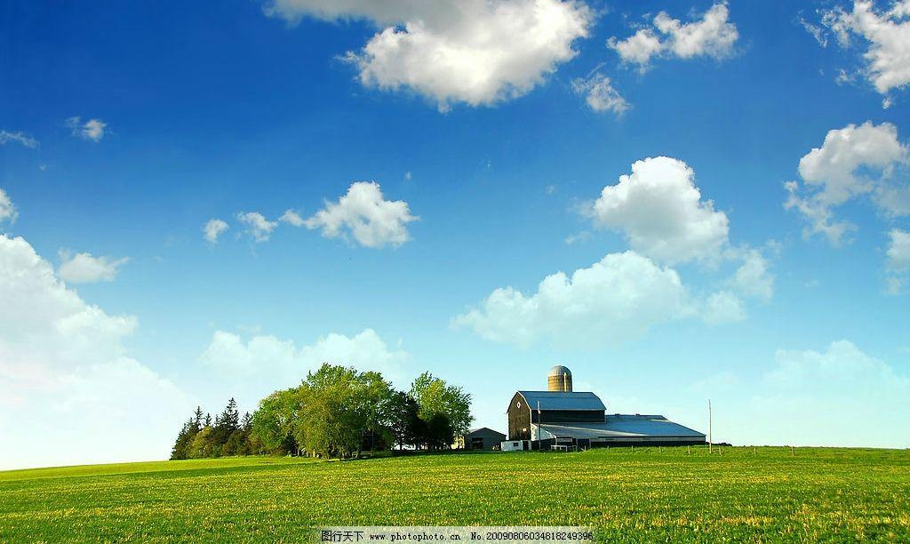 草地大树房子蓝天白云高清图片