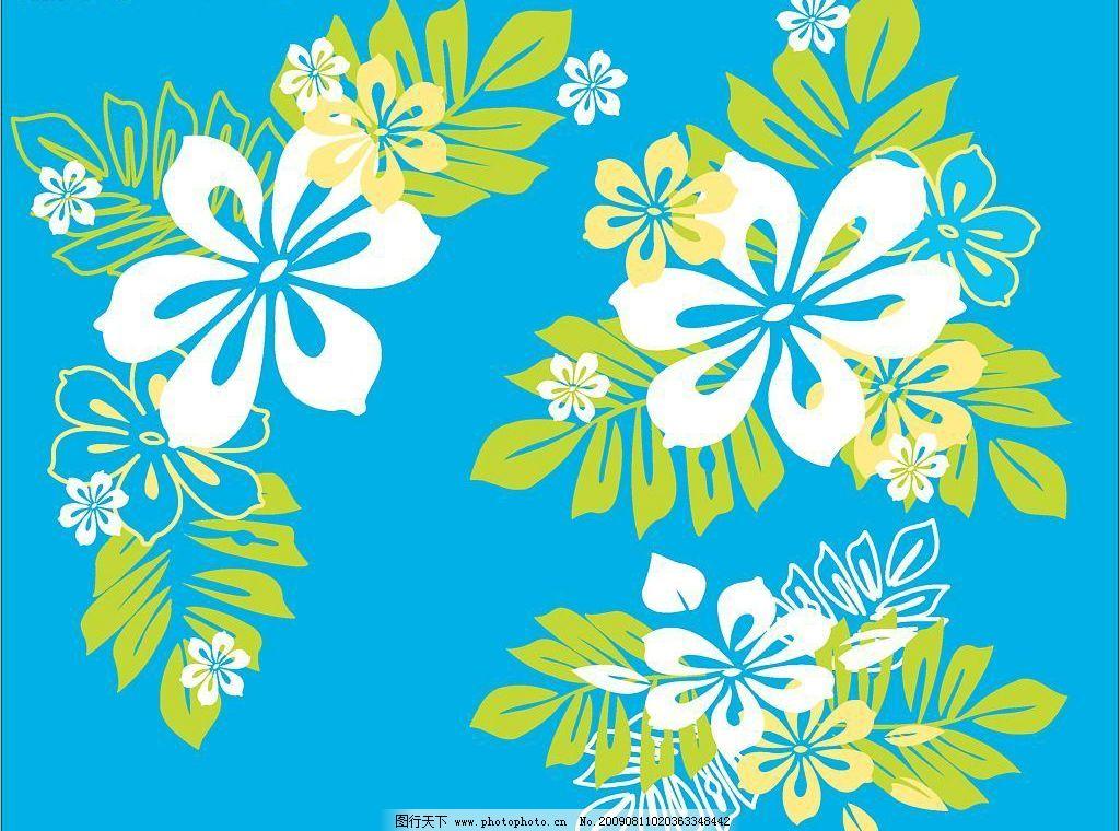 夏威夷花 花边花纹 印花底纹 植物