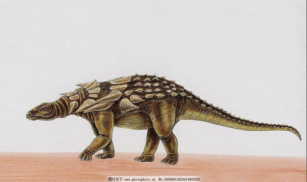 恐龙34 史前巨兽 猛兽 恐龙高清图 凶猛动物