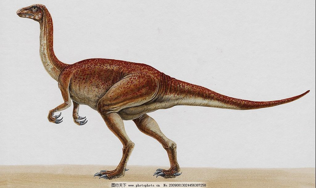 恐龙33 史前巨兽 猛兽 恐龙高清图 凶猛动物