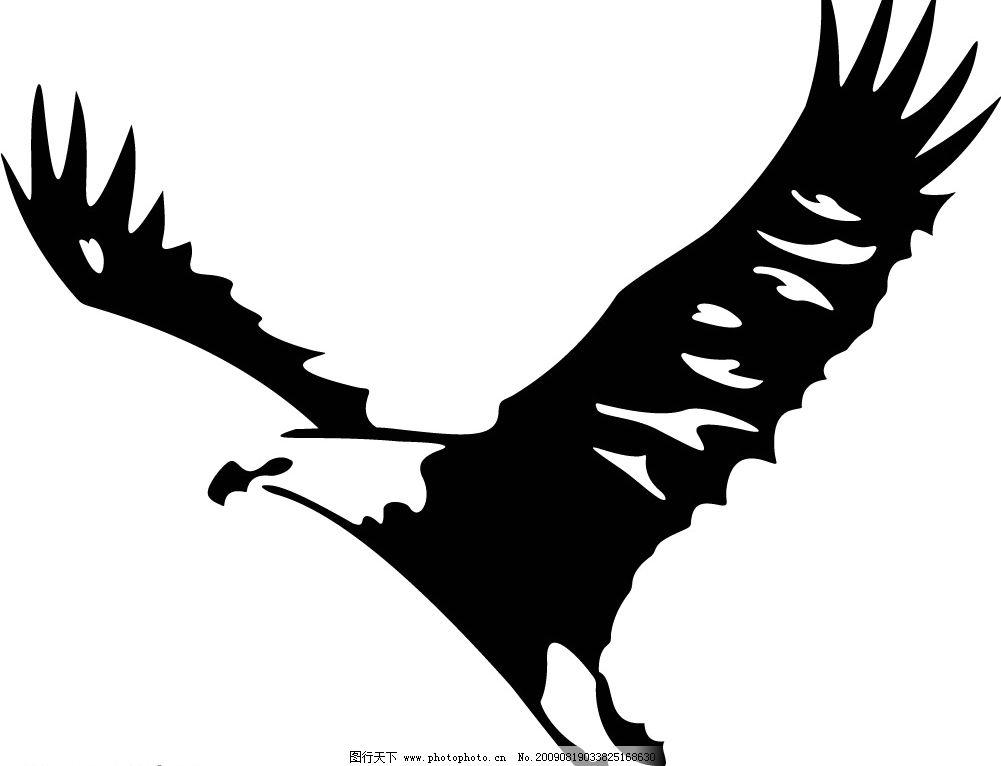 小鸟可以自由的翱翔于天空之中