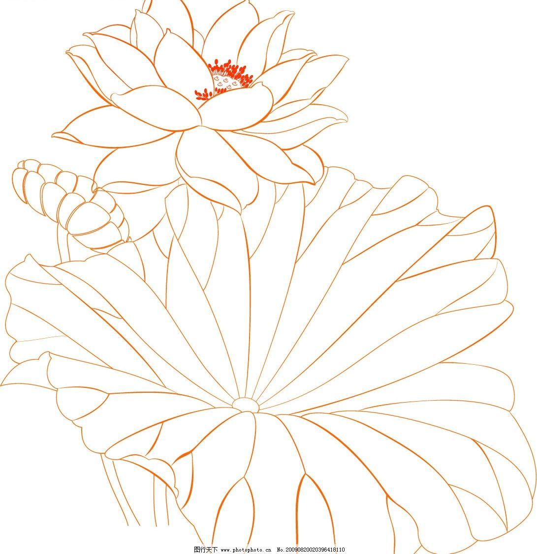 荷花 底纹 花纹 花 唯美 陶瓷贴花 底纹边框 花纹花边 矢量图库 cdr