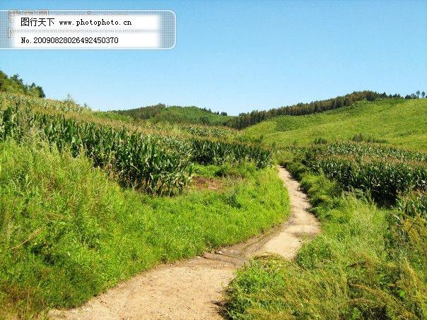 乡间小路 乡间小路免费下载 摄影图 田园风景 自然景观 图片素材