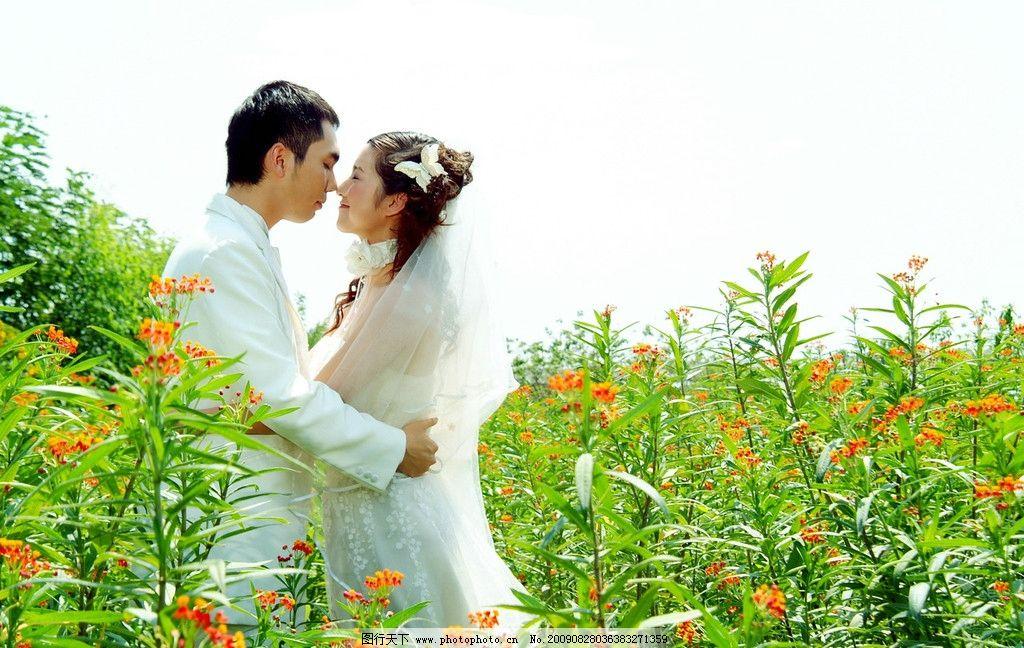 壁纸 成片种植 风景 婚纱 婚纱照 植物 种植基地 桌面 1024_648