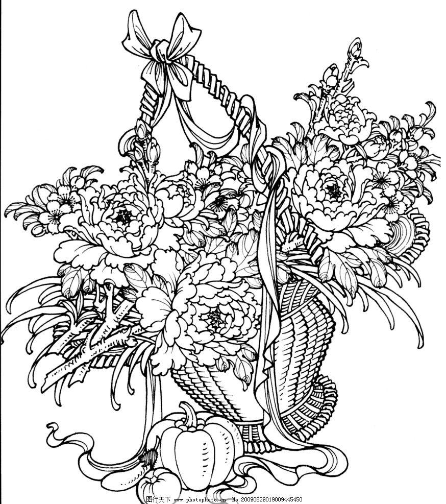 花篮 篮子 水果 线描 工笔画 黑白 白描 线条 陈金莺 矢量 陈金莺工笔
