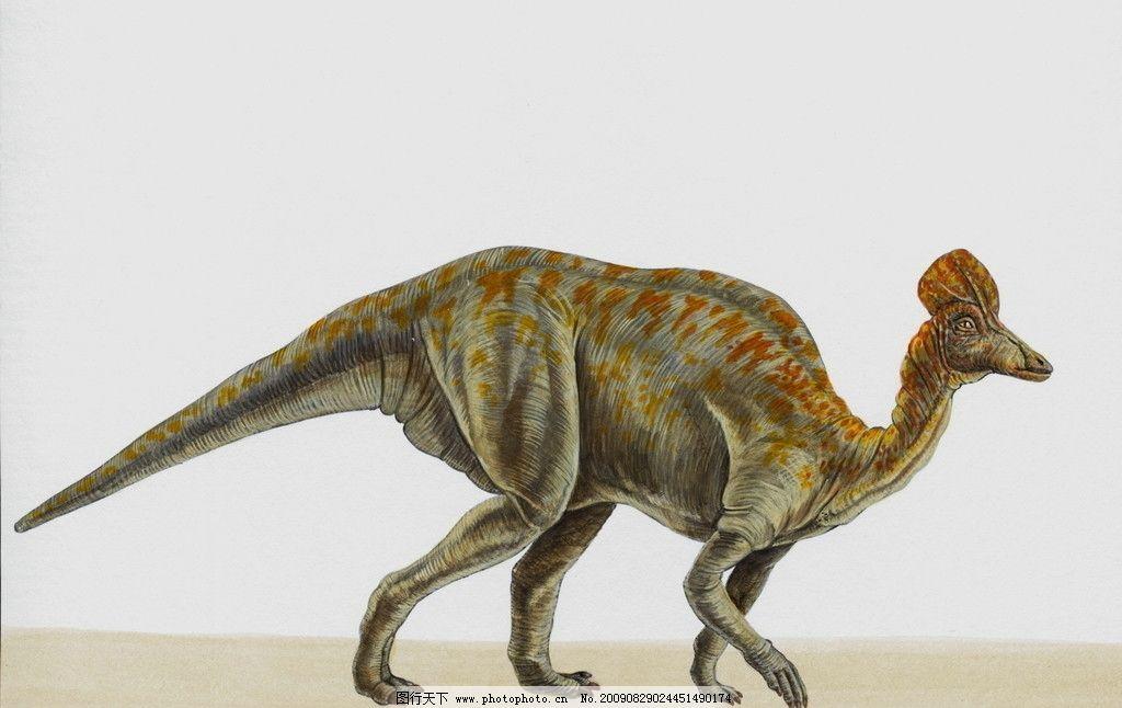 史前最大的动物300米