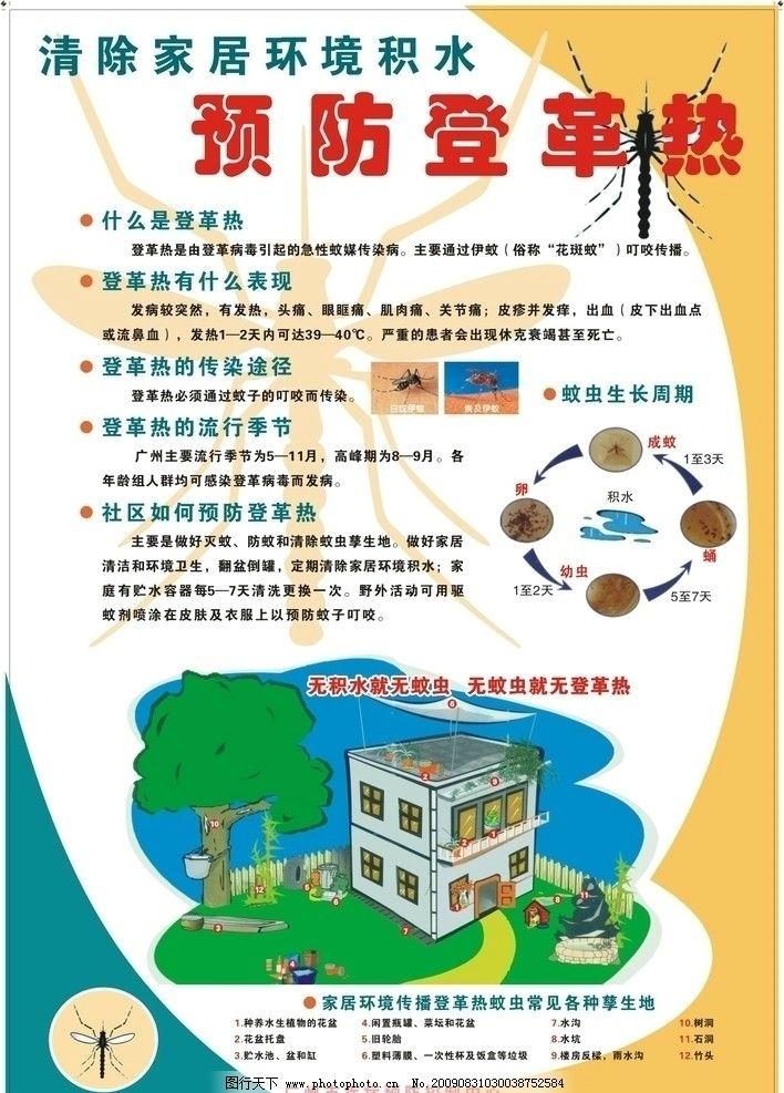 登革热宣传画 清除家居环境积水 预防登革热 海报 海报设计 广告设计