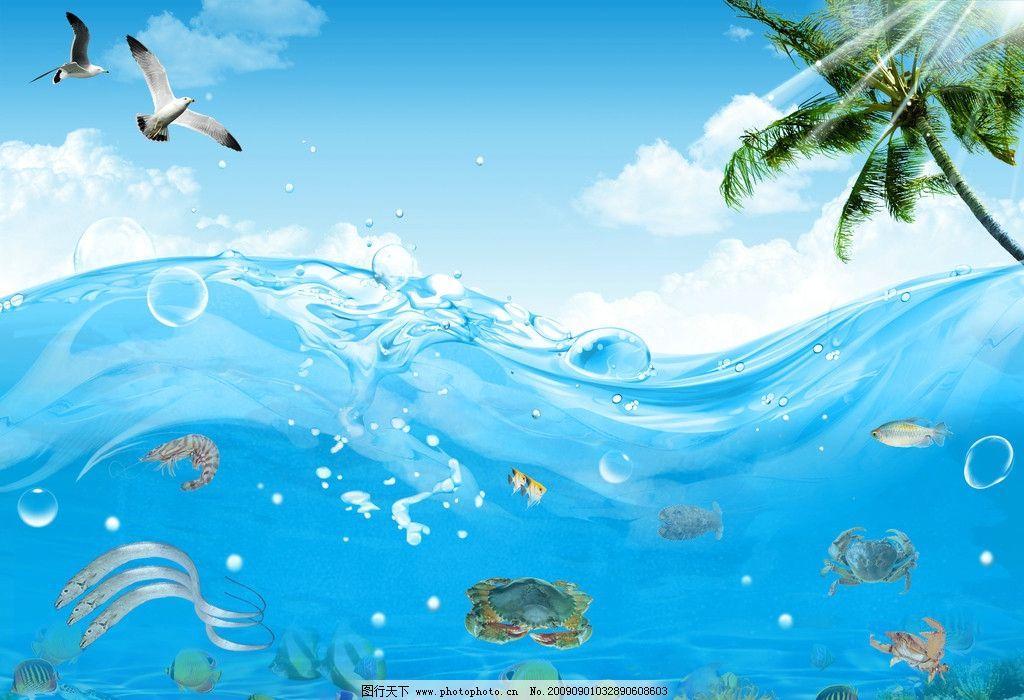 海洋 海底 海鸥 椰树 海水 鱼儿 带鱼 虾 螃蟹 蓝天 海底世界