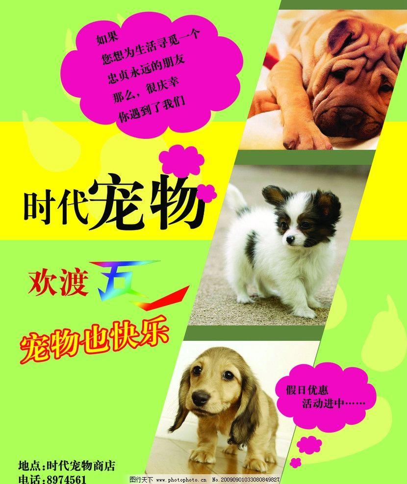 宠物店宣传海报模板 小狗