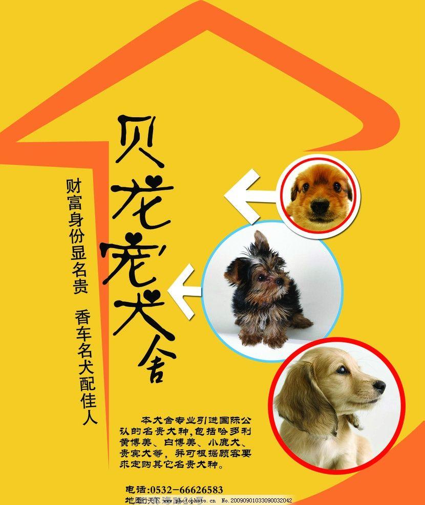 宠物店宣传海报模板图片