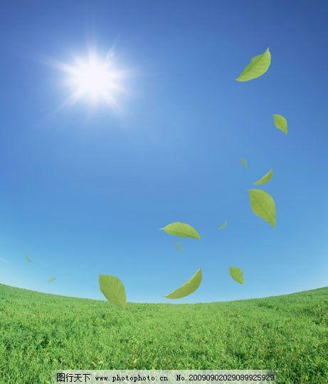 自然风景 玻璃移门图案 太阳 叶子 草地 其他设计 环境设计 150dpi