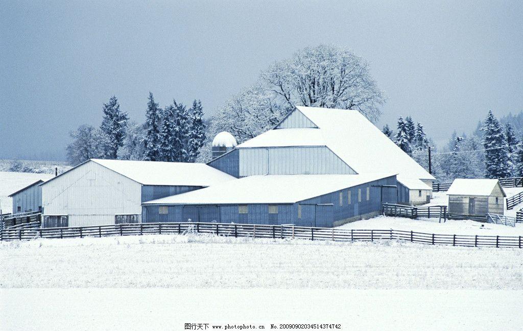 农场 国外农场 乡村风景 草原 草地 绿色 大气 植物 雪景 大雪图片
