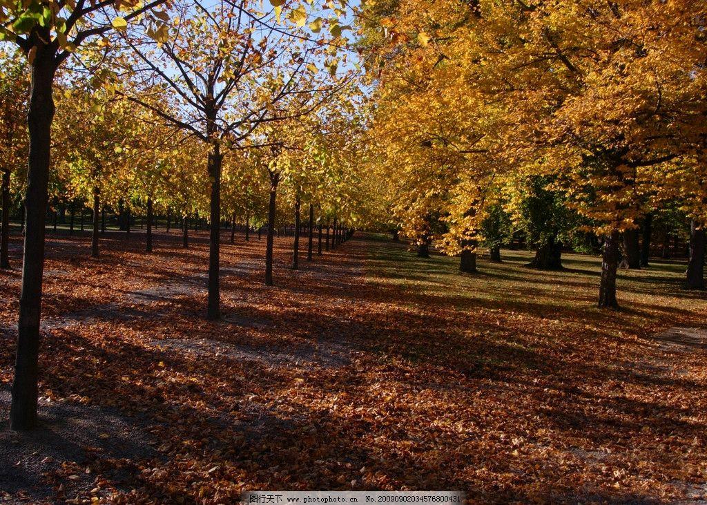 设计图库 自然景观 田园风光    上传: 2009-9-2 大小: 6.
