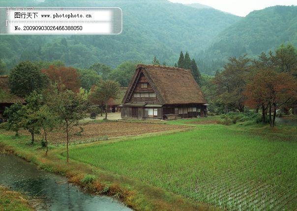 乡村田园免费下载 单门图 茅屋 森林 树林 田地 乡村田园风景写真