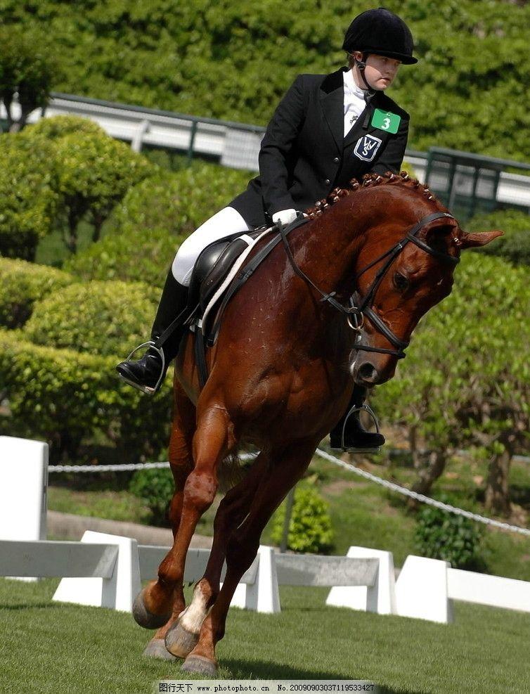 骑马1图片