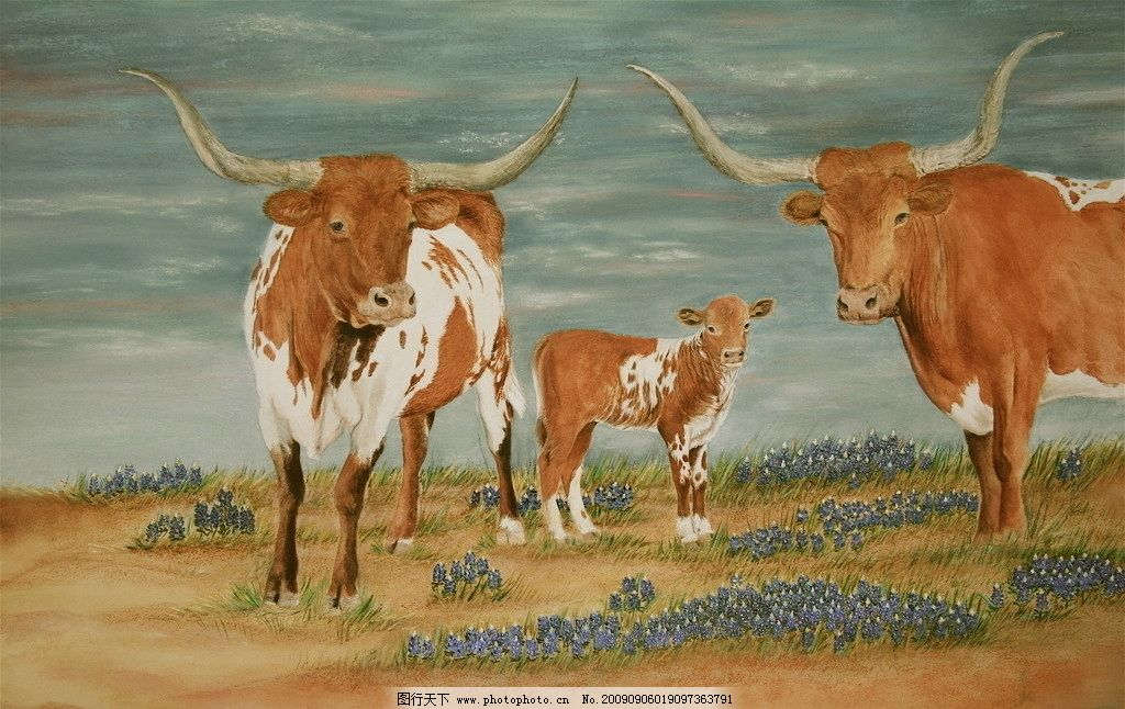 三头牛 一家三口 动物油画 绘画书法 文化艺术 设计 72dpi jpg