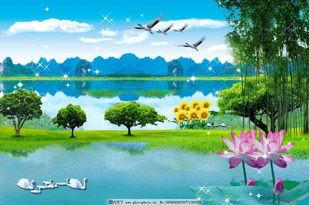 湖与池塘美丽风景广告素材 水 飞鸟 花 草 树木 荷花 荷叶 天鹅 星光图片