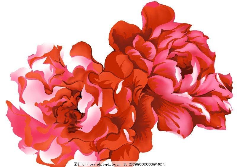 彩绘花朵图片