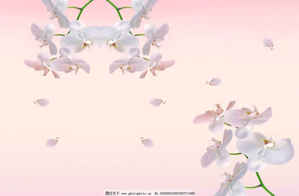 樱花移门 桃花 梅花 粉色 花瓣 花边花纹 底纹边框 设计 100dpi jpg